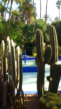Jardin Majorelle Marrakech Morocco