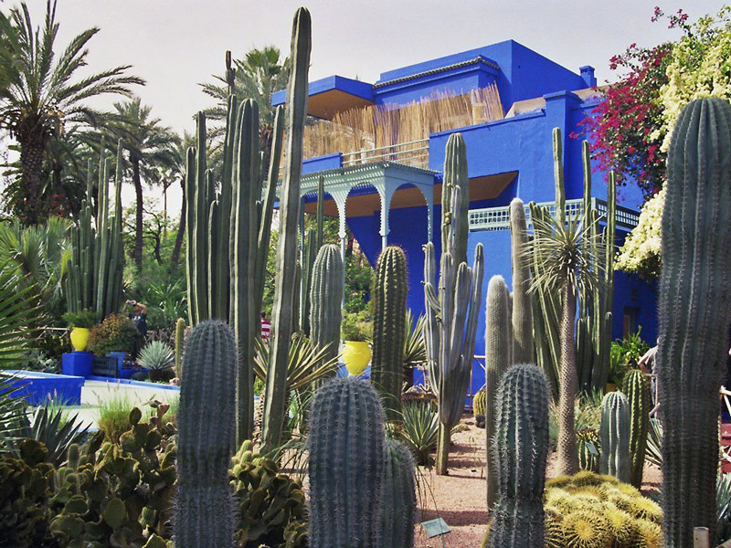 Jardin majorelle travelguide marrakech for Jardin yves saint laurent marrakech