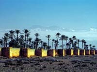 jardin agdal marrakech morocco
