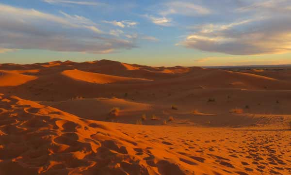 The sand dunes of Erg Chebbi