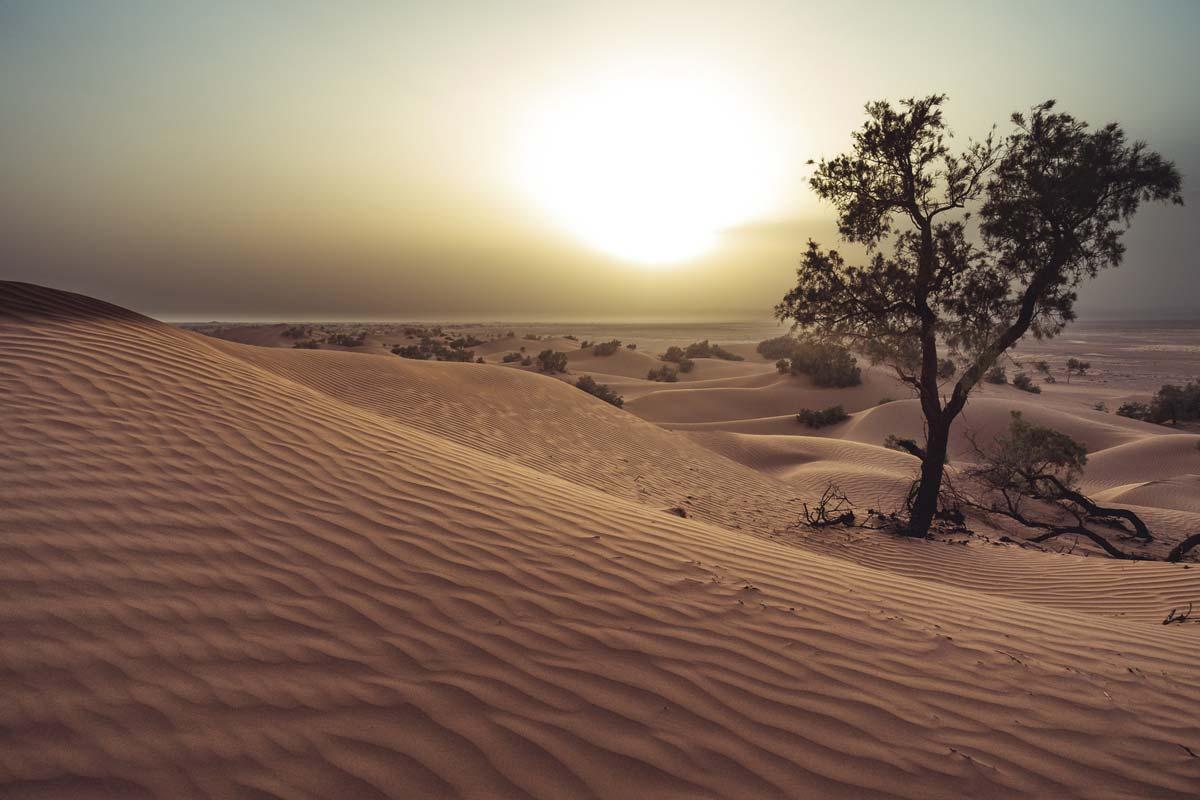 Sand dunes in Erg Chegaga, Morocco