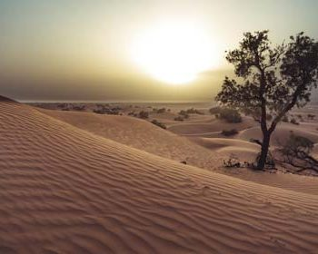 Erg Chegaga Desert tour